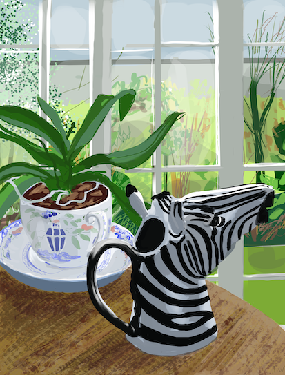 Crazy Zebra Milk Jug