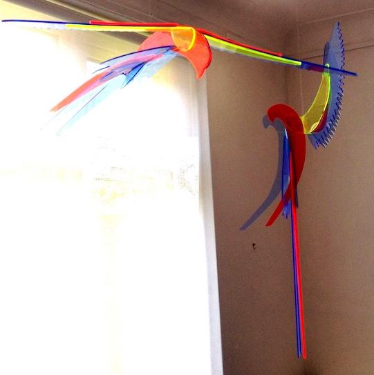 Macaw I