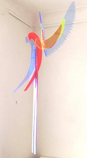 Macaw II